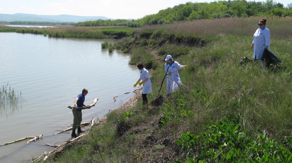 Очистка от древесных остатков и мусора прибрежной зоны Сенгилеевского водохранилища